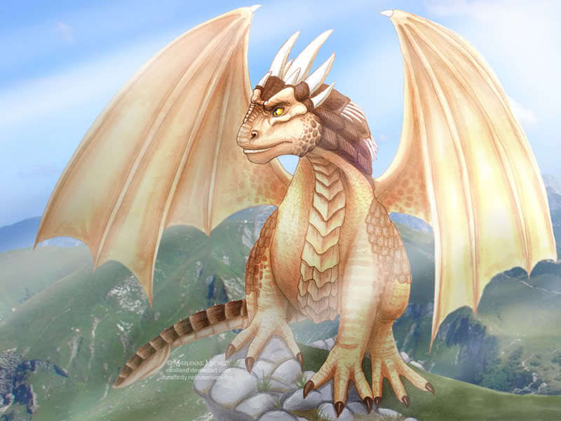 Draco-dragonheart-and-dragonheart-2-16449627-800-600[1]